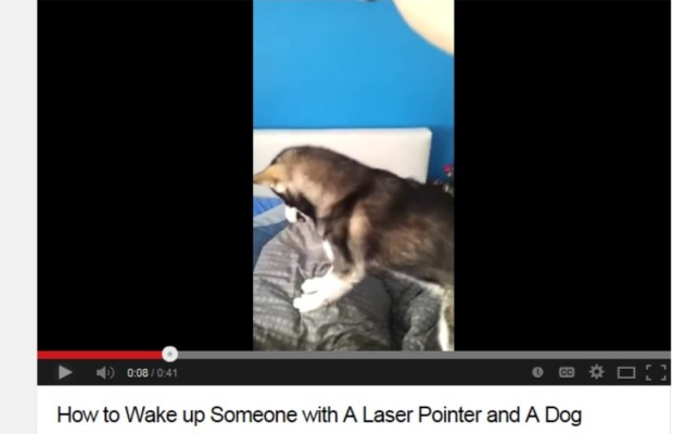 The funniest way ever to wake your boyfriend!